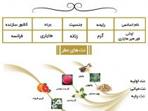 عطر اونلی فور هیر هایاری Only for Her Hayari