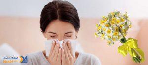 درمان سرماخوردگی با خواص گل نرگس