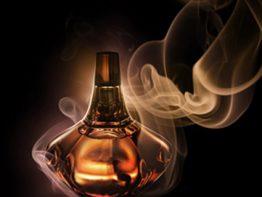 رازهایی جالب از دنیای عطر